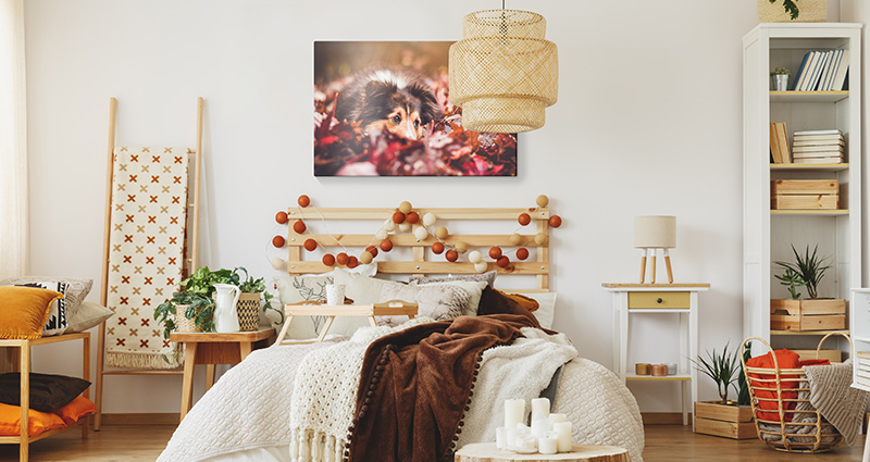 A Photo Canvas in the autumn-style decorated bedroom.