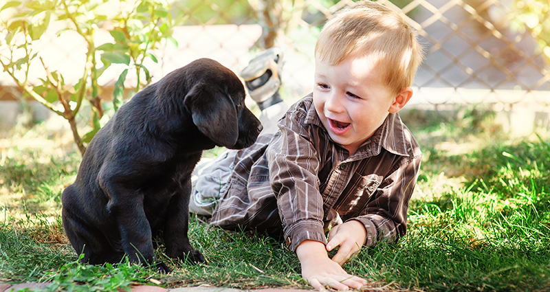 A boy playing with a puppy in the garden