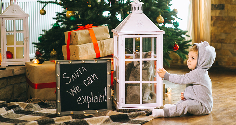 "A kid in a jumpsuit, sitting next to a Christmas tree and gifts, who is closing a cat in a big glass lantern, ""Santa we can explain"" writing on a blackboard next to them"