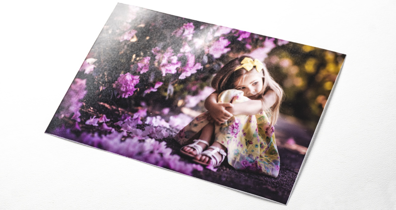 A photo of a girl sitting next to purple flower bushes – a photo printed on the Mat Premium paper.
