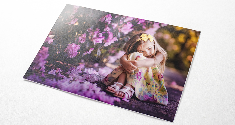 A photo of a girl sitting next to purple flower bushes – a photo printed on the PREMIUM SILK paper.
