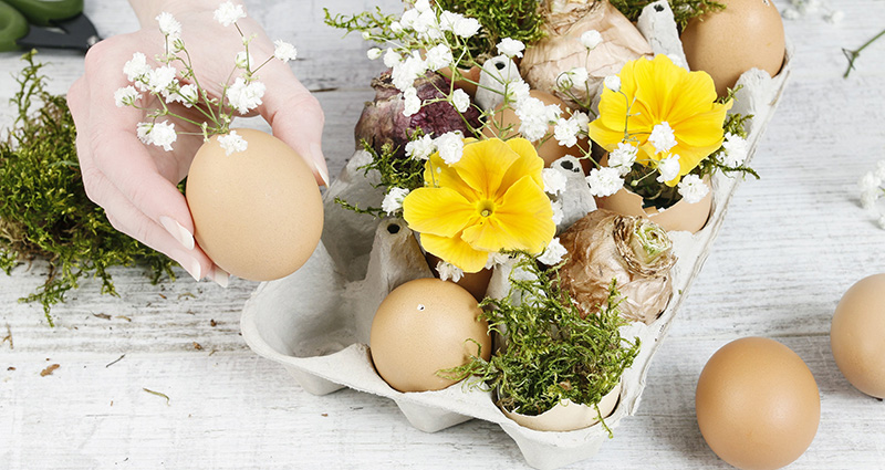 A table piece made from an egg carton. Close-up on woman's hands putting a flower decorated egg into the egg carton.