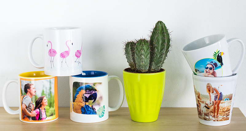 Coloured and latte photo mugs on a bookshelf, a cactus in a green flowerpot in the middle