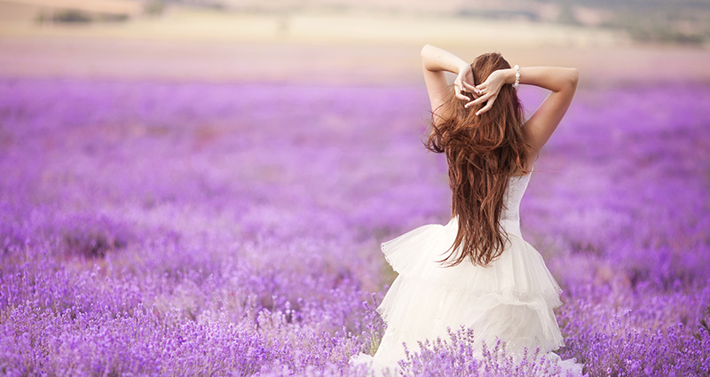 A photo of a bride walking through a field of blossoming lavender.