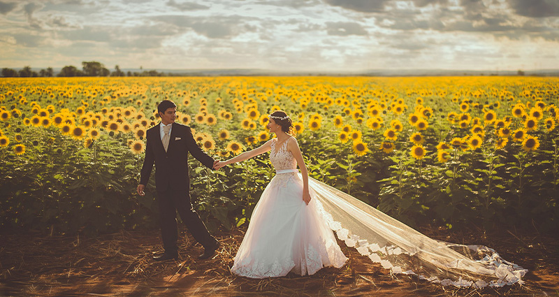 A photo of newlyweds walking near a field of blossoming sunflowers. Overclouded sky in the background.