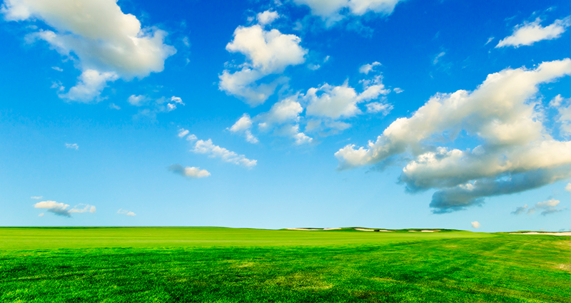 Green meadow and blue sky with white clouds.