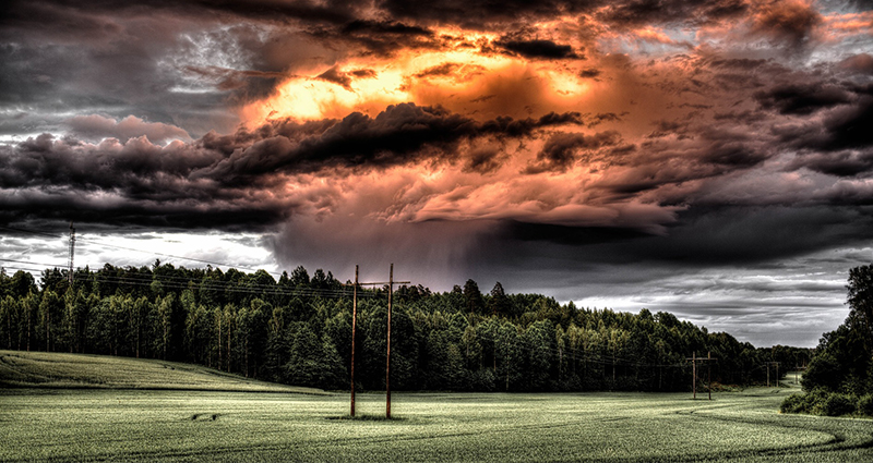 Storm cloud over the meadow and the forest.