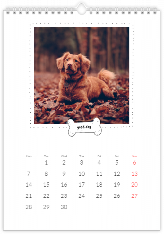 Photo Calendar 20x30 (A4 Portrait) A Calendar with a Dog