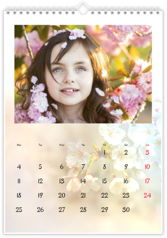 Photo Calendar 20x30 (A4 Portrait) SAISONS