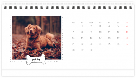 Photo Calendar Desk 21x12 (A5) A Calendar with a Dog