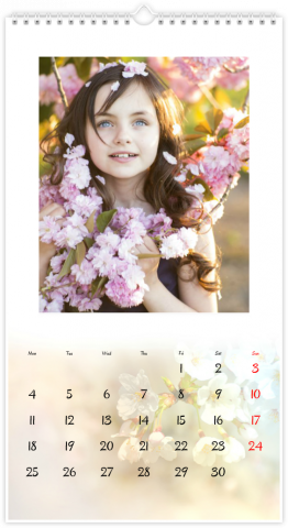 Photo Calendar 33x60,5 (XL) Seasons