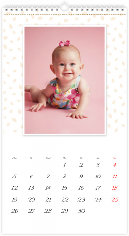 Photo Calendar 33x60,5 (XL) Papercut